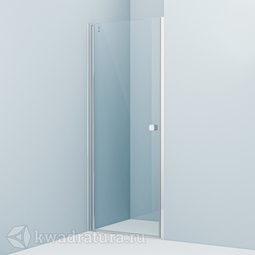 Душевая дверь Iddis Ray RAY6СP8i69 80 см