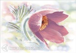 Декор для настенной плитки Alma Ceramica Lila DWU07LIL005 24,9*36,4 см